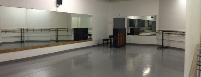 Joffrey Ballet School is one of NYC Bucket List.