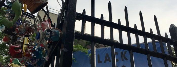 La Plaza Cultural Community Garden is one of L.E.S..