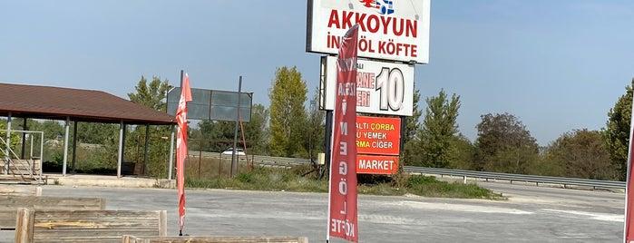 Akkoyun Dinlenme Tesisleri is one of Tempat yang Disukai Murat karacim.