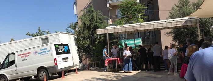 Pasvak Aşevi is one of Denizli.