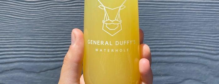 General Duffy's Waterhole is one of Lieux qui ont plu à Erin.