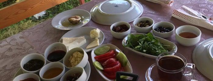 Yıldız Köy Kahvaltısı is one of Selcan'ın Beğendiği Mekanlar.