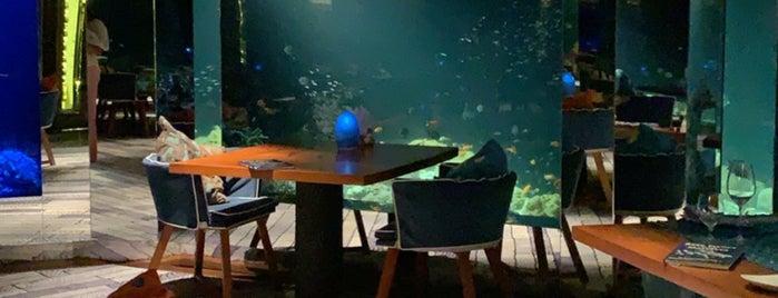 Sea Underwater restaurant is one of Nouf : понравившиеся места.