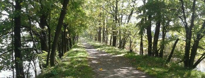 Přírodní rezervace Vrbenské Rybníky is one of Travel - CR.