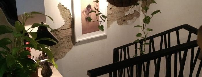 Café Zeppelin is one of Medellin cafes.