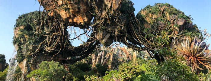Pandora - The World of Avatar is one of Fernando Vianaさんのお気に入りスポット.