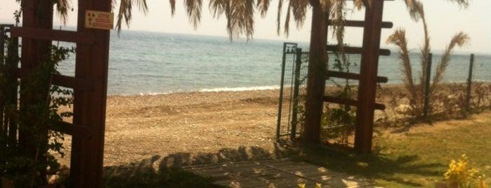 Salash Beach&Restaurant (Atilla Saral) is one of สถานที่ที่บันทึกไว้ของ Emre.