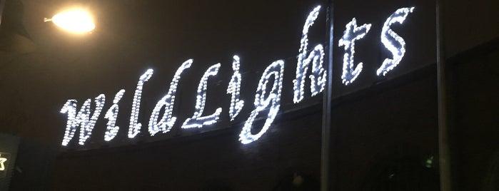 Wild Lights is one of Jonathan 님이 좋아한 장소.