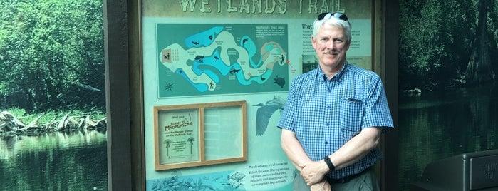 Wetlands Trail is one of สถานที่ที่ E ถูกใจ.