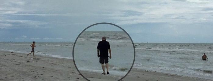 Tarpon Bay Beach is one of Posti che sono piaciuti a Dana.