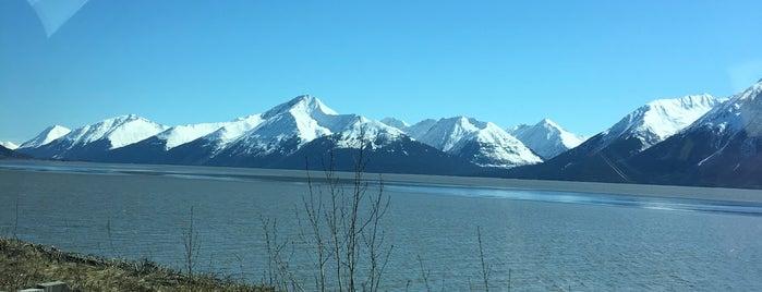 turnagian arm is one of Alaska cruising.