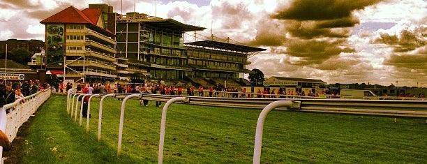 York Racecourse is one of يورك.