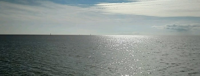 Mississippi Sound is one of Gulf Coast.