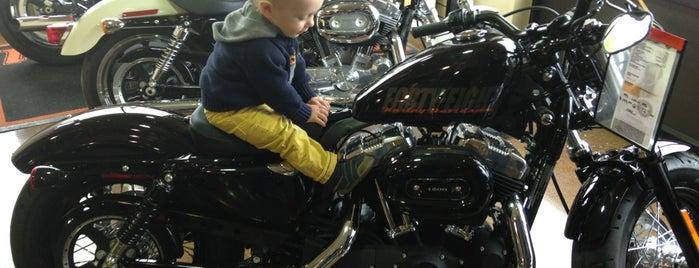 Denali Harley-Davidson is one of Locais curtidos por Dennis.