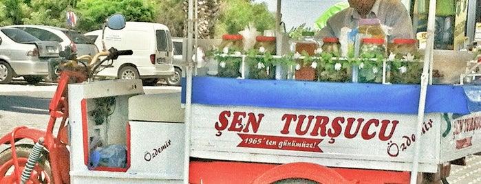 Şen Turşucu Özdemir is one of Should Go! Gitmelisin..