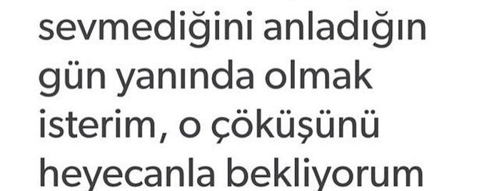 Bolu Dağı Mangalevi is one of สถานที่ที่ Aslı ถูกใจ.