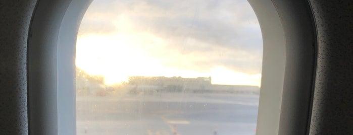 Tarmac Palma Airport is one of V͜͡l͜͡a͜͡d͜͡y͜͡S͜͡l͜͡a͜͡v͜͡a͜͡'ın Beğendiği Mekanlar.