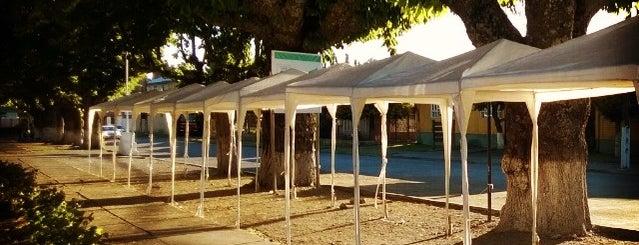 Plaza de Armas Cunco is one of สถานที่ที่ Karen ถูกใจ.