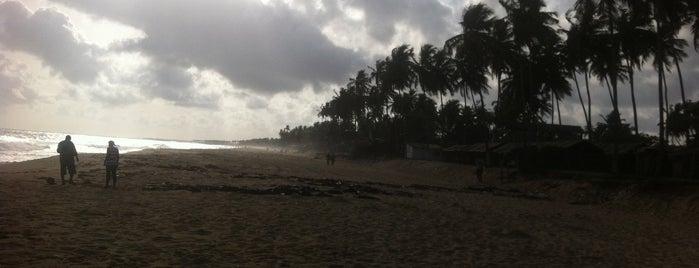 Aleria beach is one of Lieux qui ont plu à Erol.