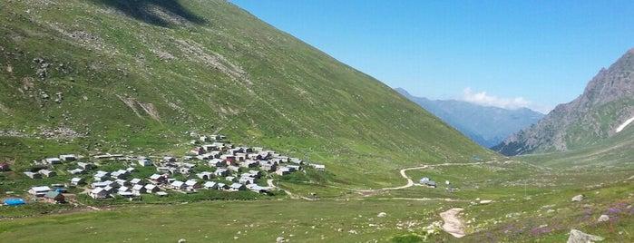 Trovit Yaylası is one of Mountain Resorts In Black Sea Region.