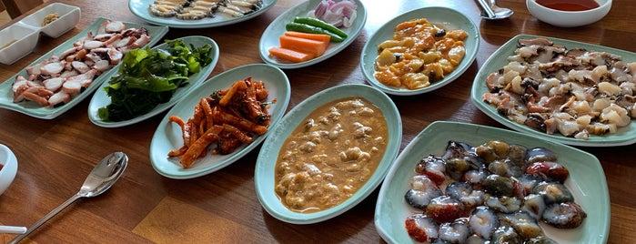 섭지코지 해녀밥상 is one of 음식.