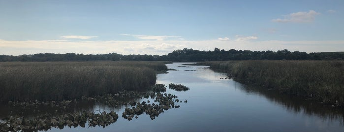 Russ Peterson Urban Wildlife Refuge is one of Do: Wilmington ☑️.