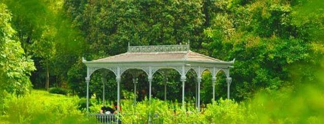Singapore Botanic Gardens is one of สถานที่ที่ Torzin S ถูกใจ.