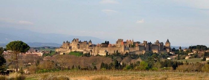 Cité de Carcassonne is one of Orte, die Torzin S gefallen.