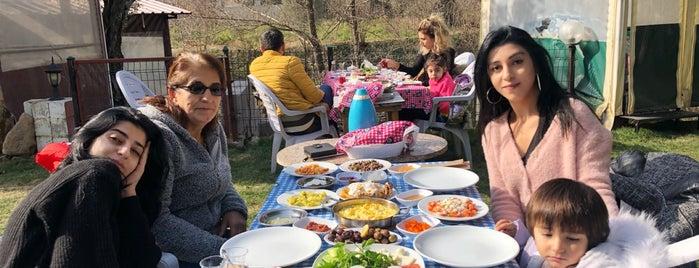 Efe Köy Kahvaltısı Ve Çay Bahçesi is one of Onurさんのお気に入りスポット.
