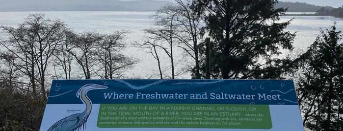 Tillamook Bay is one of Northwest.