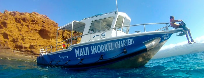 Maui Snorkel Charters is one of Lugares guardados de Diana.