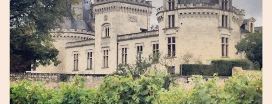 Château de Brézé is one of Roadtrip / Loire.