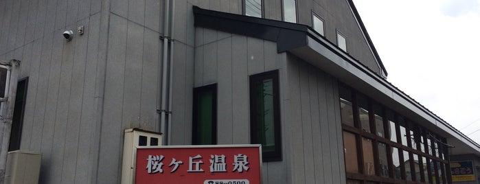 桜ヶ丘温泉 is one of Lieux qui ont plu à 2.