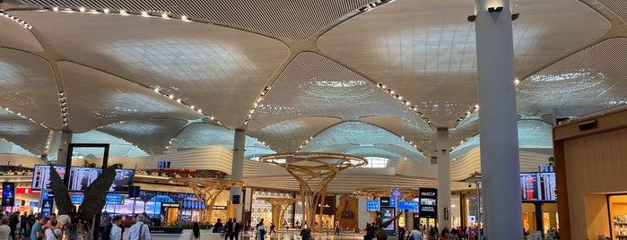 İstanbul Havalimanı (IST) is one of henry'in Beğendiği Mekanlar.