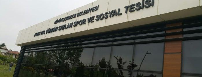 Prof. Dr. Türkan Saylan Spor ve Sosyal Tesisleri is one of Locais curtidos por Acar.