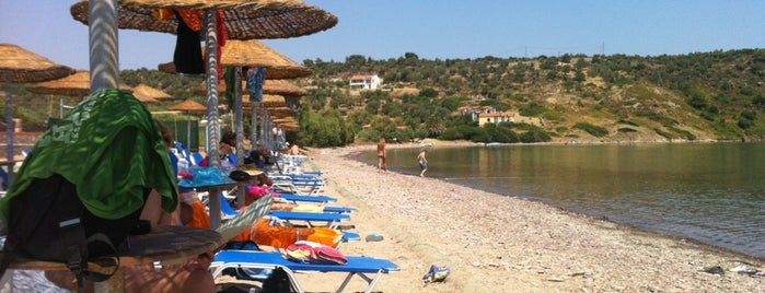 Xampelia Beach Bar is one of Orte, die Banu Y gefallen.