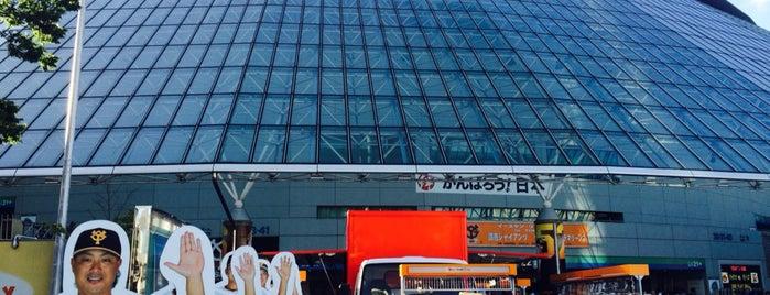 Tokyo Dome is one of Lugares favoritos de Cynthia Calzada.