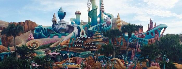 Tokyo DisneySea is one of Lugares favoritos de Cynthia Calzada.