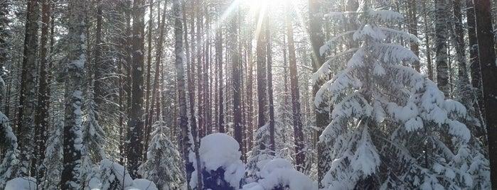 Тёплая Гора is one of Отдых и развлечения.