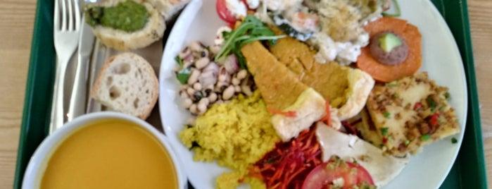 Da Terra | Restaurante vegetariano is one of Porto.