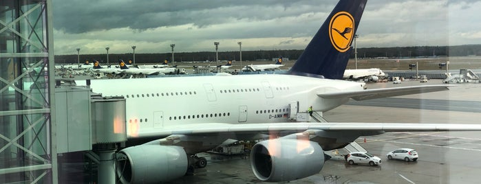 Lufthansa Flight LH 760 is one of Airport.