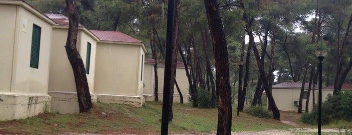 Προσκοπικό Κέντρο Αγίου Ανδρέα is one of Προσκοπικά Κατασκηνωτικά Κέντρα || Ελλάδα.