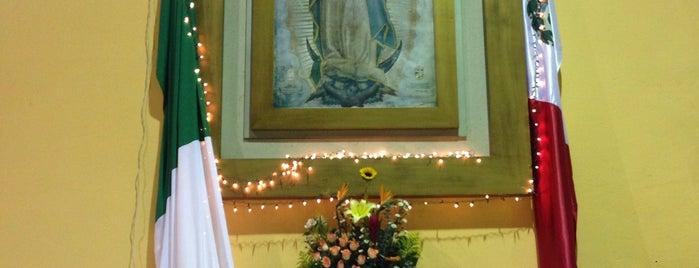 Parroquia Cruz del Apostolado is one of สถานที่ที่ Mayra ถูกใจ.