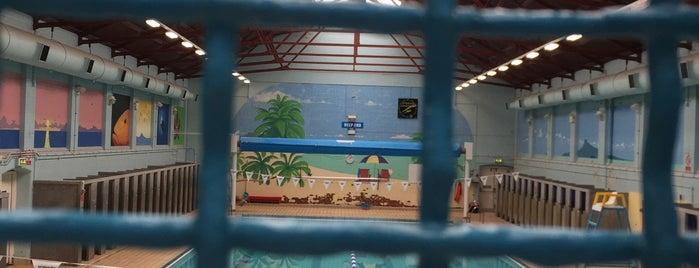 Portland Leisure Centre is one of Locais curtidos por Leonard.