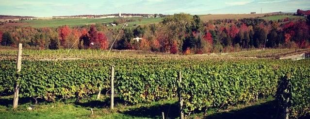 Vignoble Les Côtes du Gavet is one of Tiziana 님이 저장한 장소.