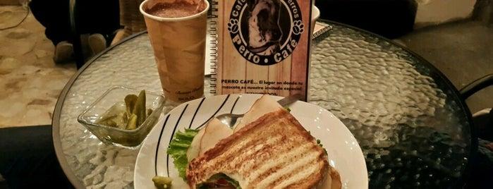 Perro café (Pet Friendly) is one of Lieux sauvegardés par TTL.