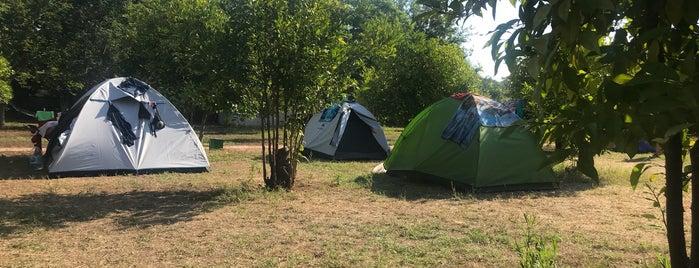 Rüzgar Gülü Camping is one of Olympos.