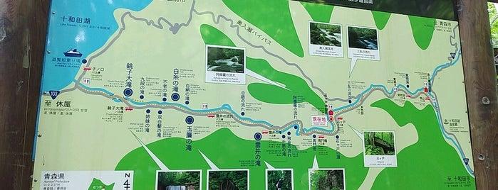 おいらせ渓流観光センター is one of Aomori/青森.