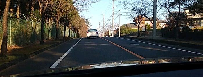 桜ヶ丘1丁目 is one of 東鉄バス 名鉄緑台線.