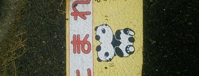 桂ヶ丘一丁目 is one of 東鉄バス 名鉄緑台線.